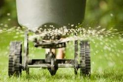 6-24-24 Fertilizer
