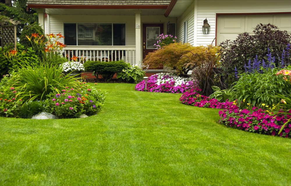Landscaping Chicago