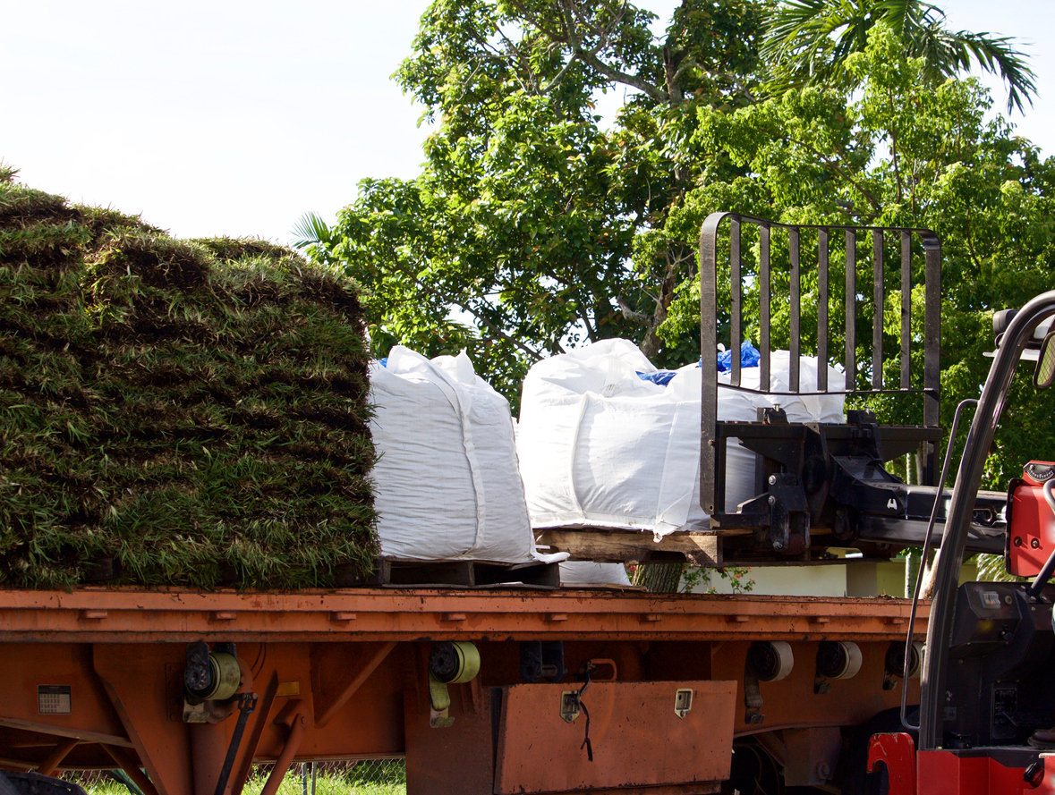 Wholesale Sod Supplier