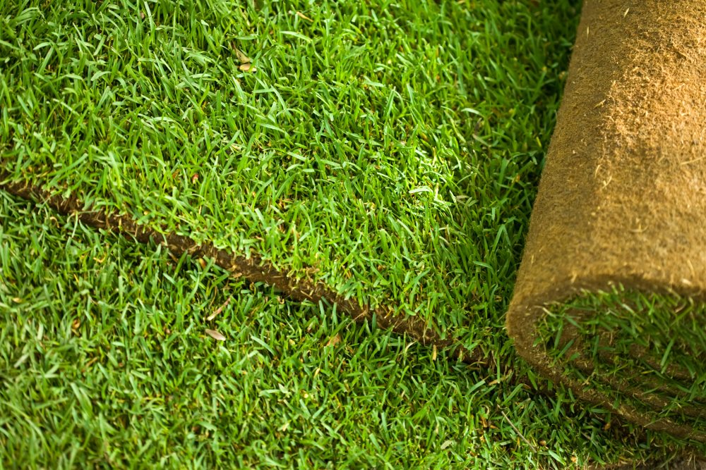 Fertilizer Supplier Elburn Sod Pricing