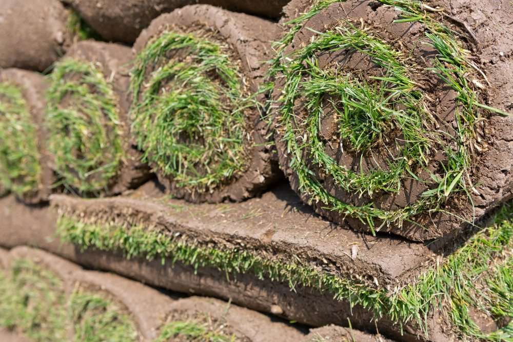 sod supply northern illinois